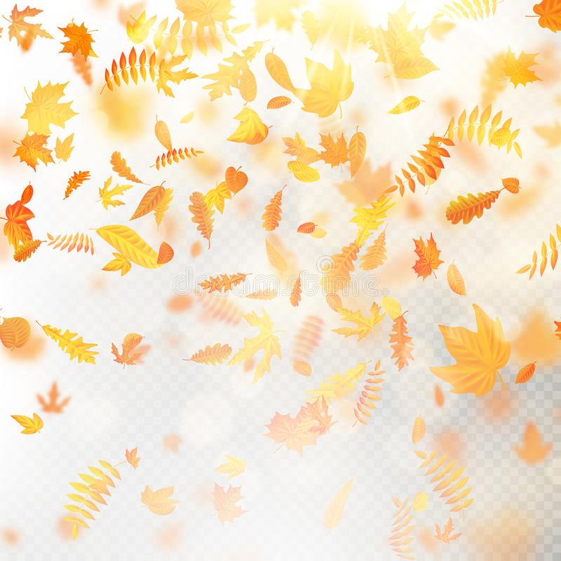 Effect of autumn falling leaves layer with shallow DOF blur. Autumnal foliage fall template. Warm color. EPS 10 royalty free illustration