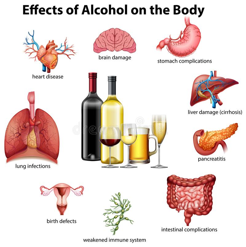Effects of alcohol on the body. Illustration stock illustration