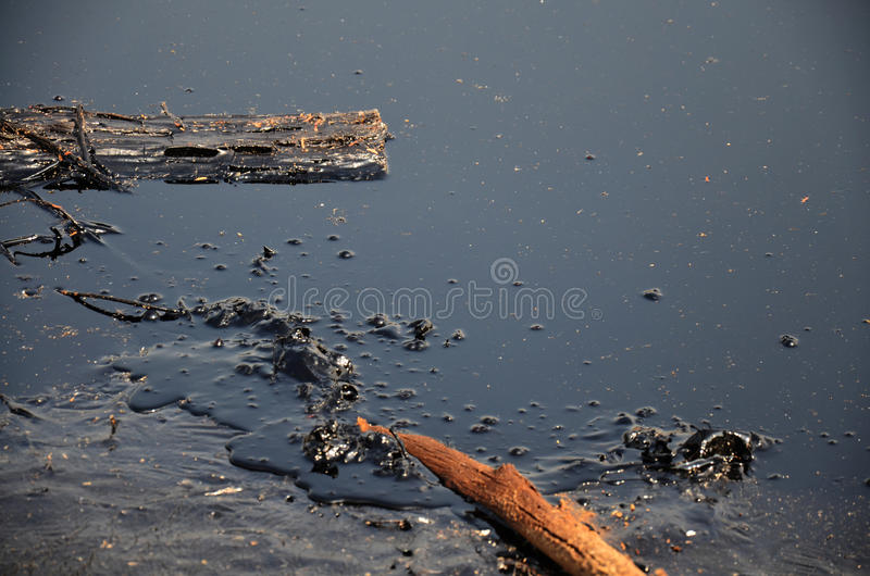 Download Effects Environmental From Water Contaminated With Chemicals And Oil Stock Photo - Image of desert, disasters: 49304010