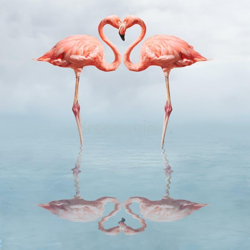 Effectuer l'amour