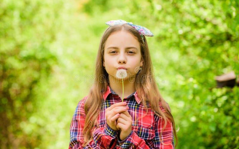 Effectuez un souhait Pissenlit Vacances de ressort le jour des femmes peu de fille et avec la fleur de taraxacum Beaut? normale E photographie stock libre de droits