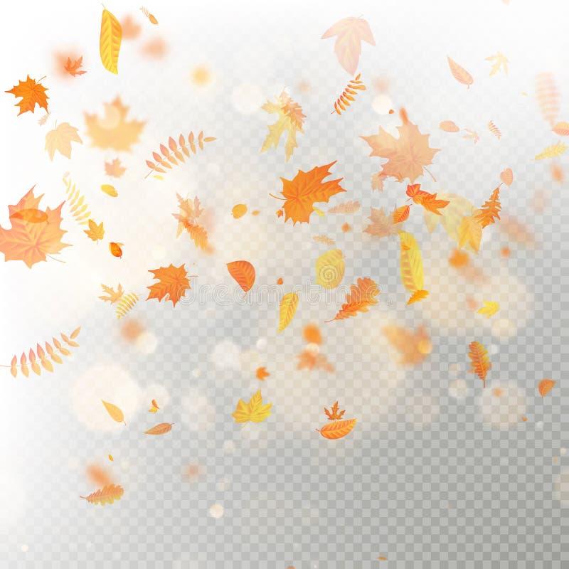 Effekt av det fallande sidalagret för höst med grund DOF-suddighet Höstlig lövverknedgångmall varm färg 10 eps royaltyfri illustrationer