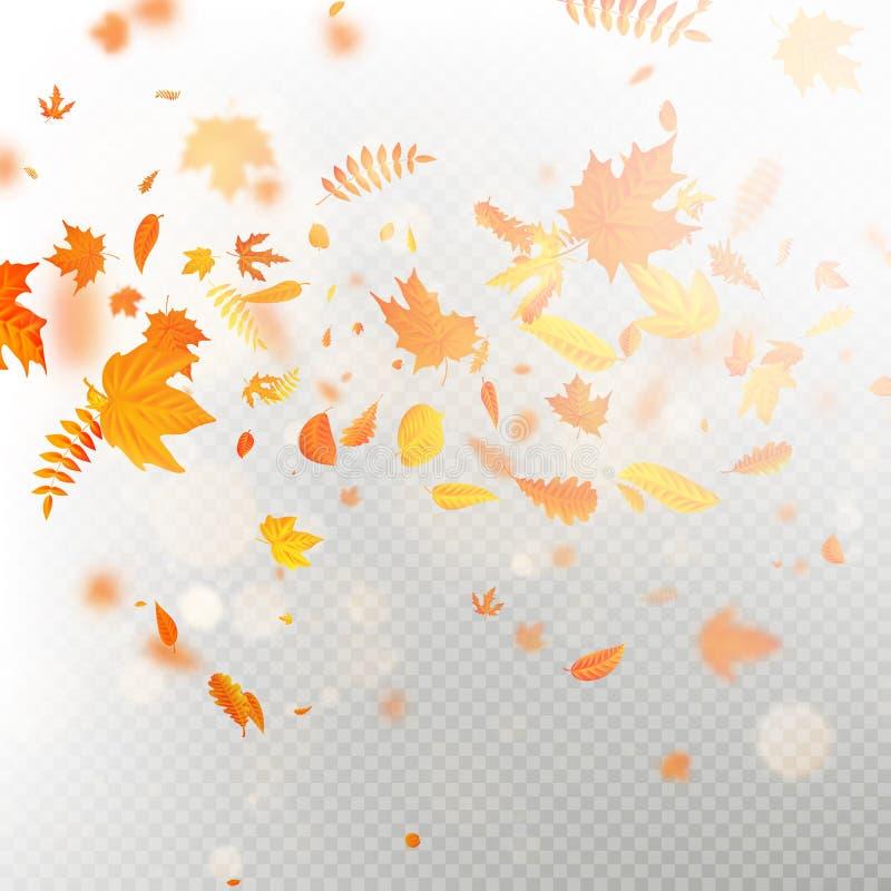 Effekt av det fallande sidalagret för höst med grund DOF-suddighet Höstlig lövverknedgångmall varm färg 10 eps stock illustrationer