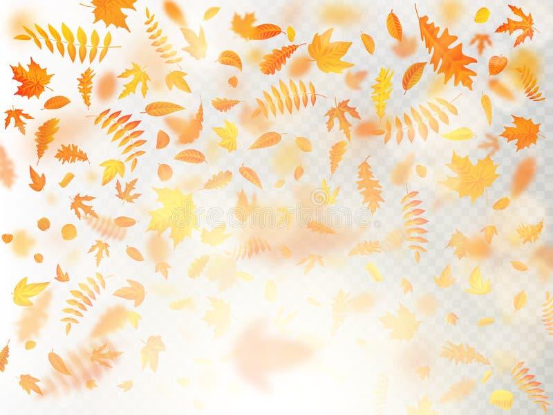 Effekt av det fallande sidalagret för höst med grund DOF-suddighet Höstlig lövverknedgångmall varm färg 10 eps vektor illustrationer