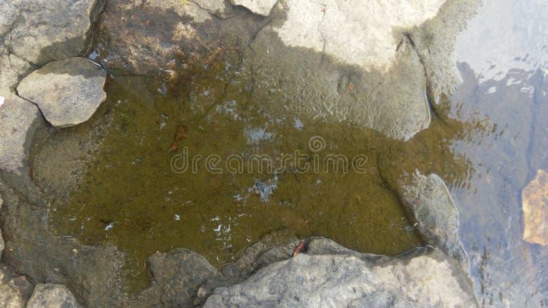 Effet de l'eau photographie stock libre de droits