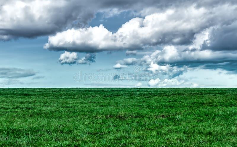 Effet de Medvesi XP sur le champ avec le beau temps photos stock