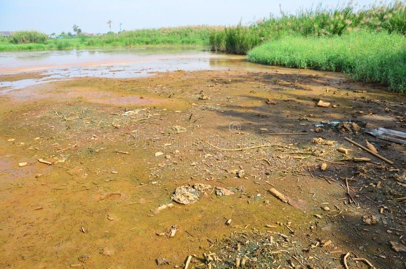 Effets de l'environnement des produits chimiques et des métaux lourds dans le sol photos libres de droits