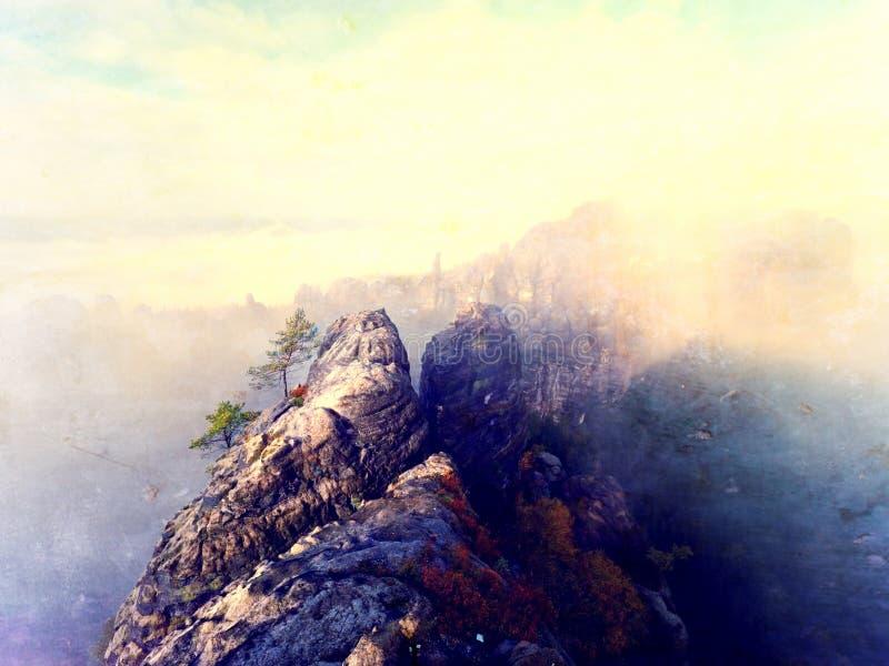 Effetto astratto Alba di autunno in montagna all'interno dell'inversione Picchi della striscia delle colline fuori da nebbia fotografia stock libera da diritti
