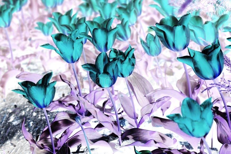 Effetto digitale dei fiori di struttura floreale astratta del fondo immagini stock