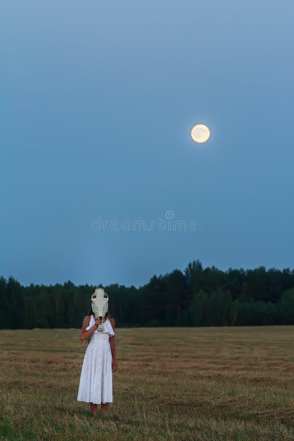 Effrayer la robe blanche de port de jeune femme avec le crâne de cheval sur sa tête au champ de nuit images stock