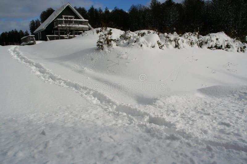 Efter högryggade träsoffor för en snöstorm royaltyfria bilder