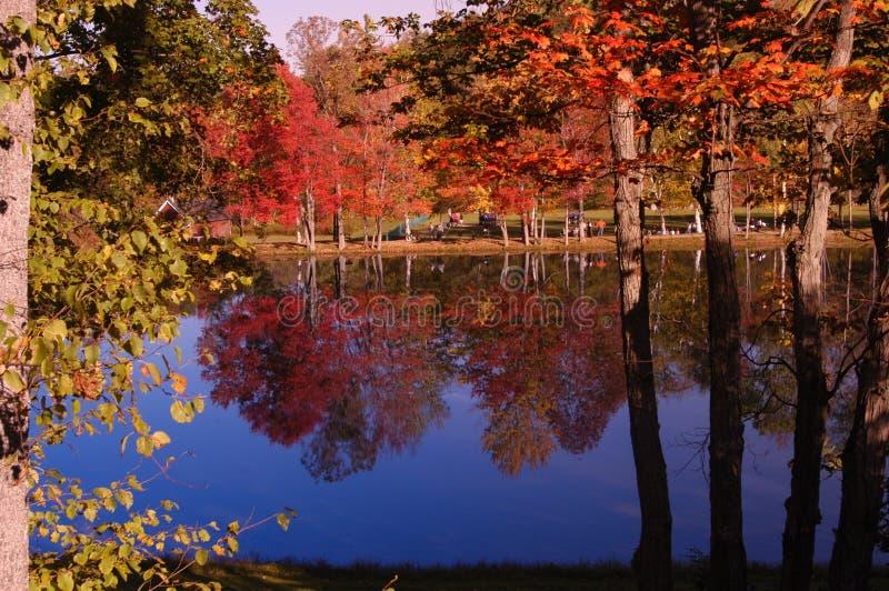 Download Eftermiddagreflexioner fotografering för bildbyråer. Bild av nytt - 47433