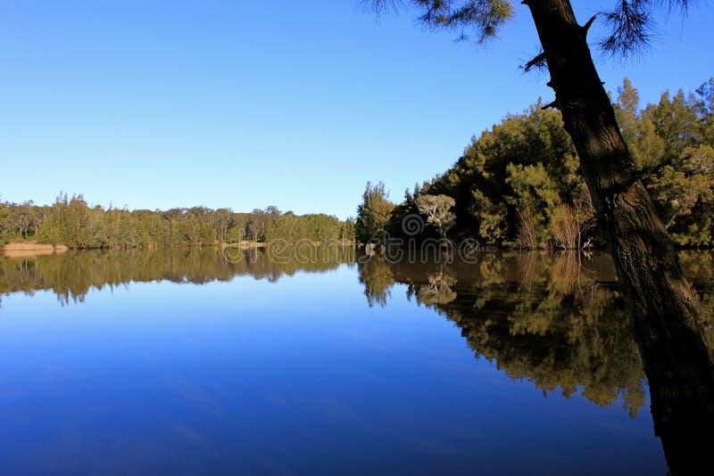 eftermiddagreflexionsflodstrand arkivfoton