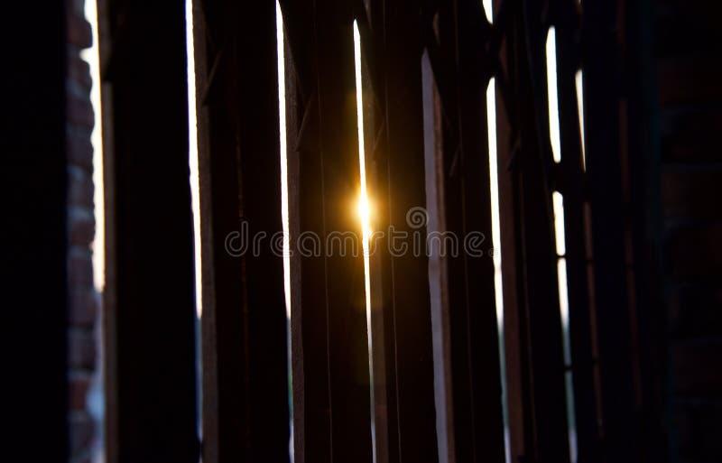 Eftermiddagsolljus till och med skyddsgallret royaltyfri bild