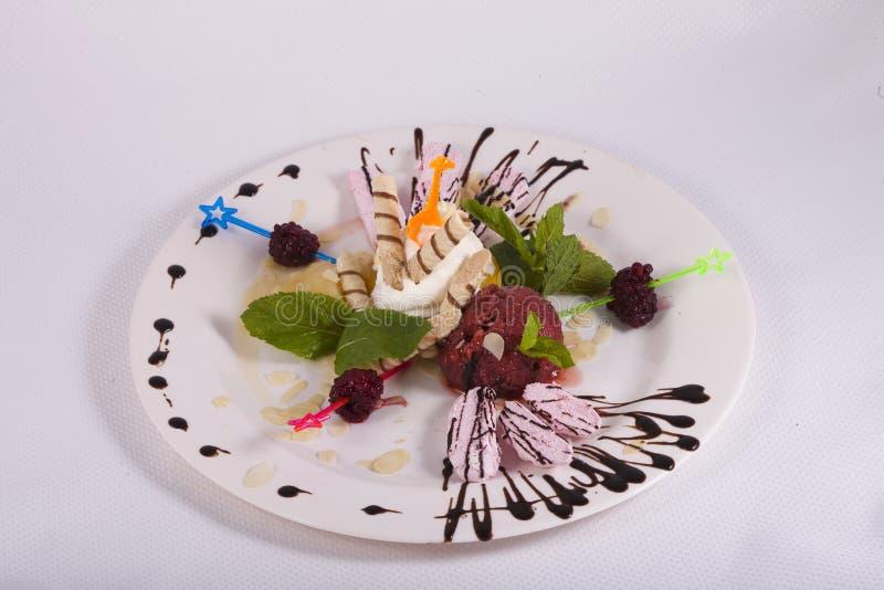 Efterrätten av glass med dillandear, bär, sorbet dekorerade mintkaramellen royaltyfri fotografi