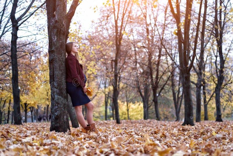 Eftertänksamt ungt gravid kvinnaanseende vid trädet Hösten parkerar på bakgrunden arkivbild