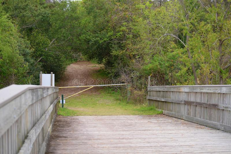 Egans Creek Greenway paths sometimes lead to wooden bridges which lead to more pathways. Amelia Island`s Egans Creek Greenway offers an array of beautiful stock photo