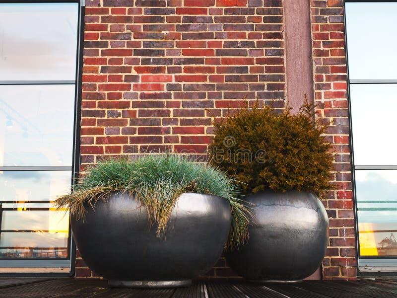 Egenskap - Planter - terrass - trädgård arkivbild