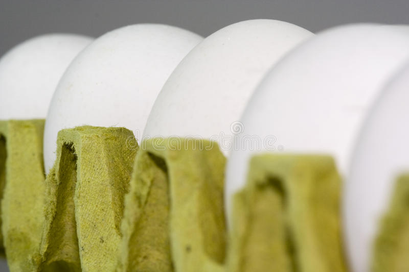 Egg. A macro view of eggs royalty free stock photography