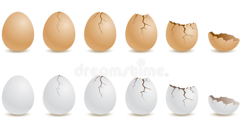 egg royalty free illustration