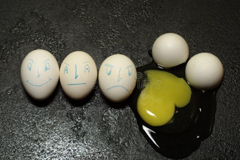 Egg stock photos