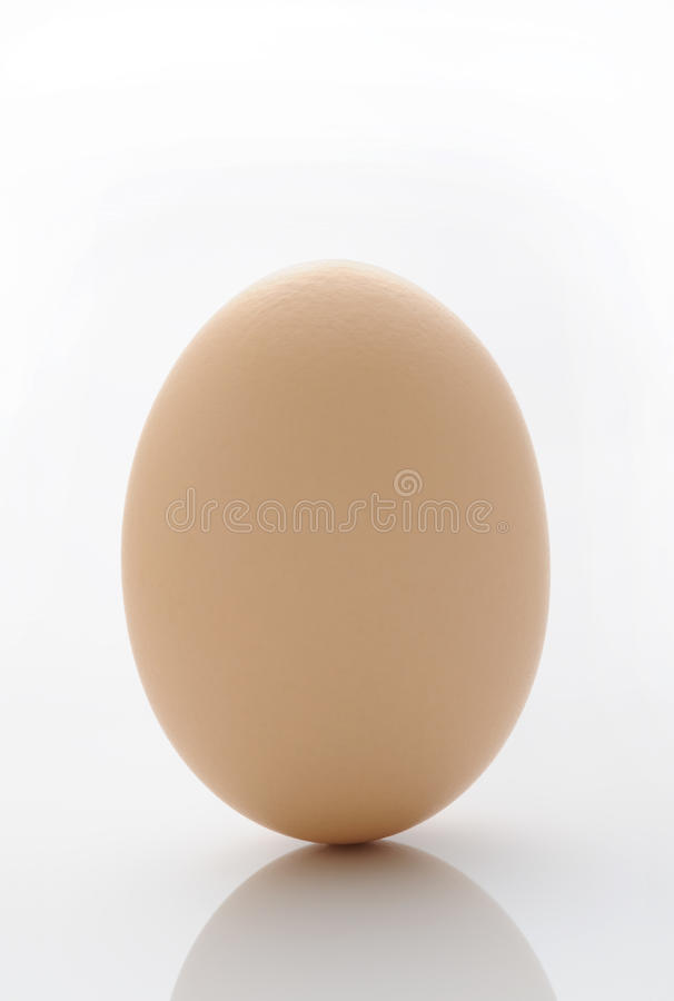 Download Egg stock photo. Image of farm, calorie, boiled, growing - 14540026