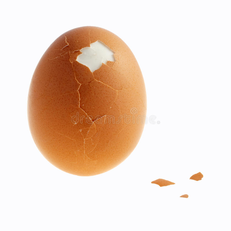 Download Egg stock image. Image of food, bits, bird, scale, boiled - 15483491