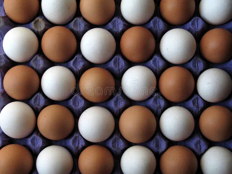 Download Egg stock image. Image of whites, foods, birth, meal, selection - 181873