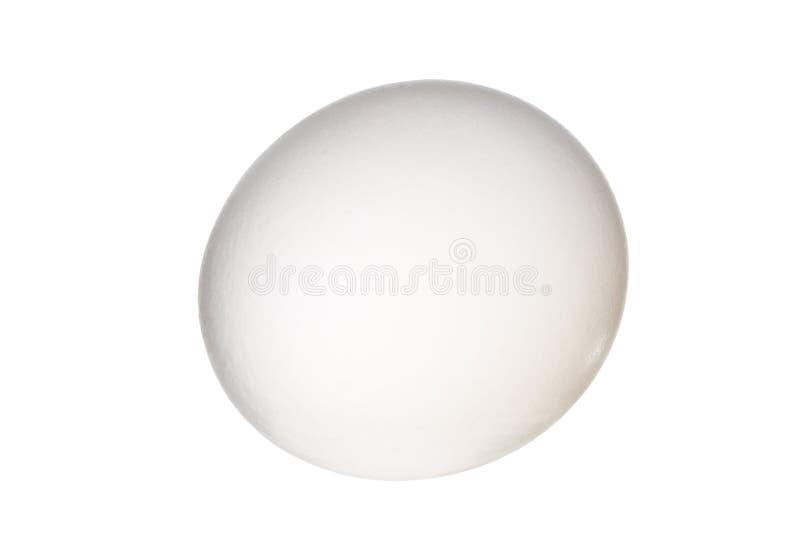Download Egg stock photo. Image of hardboiled, hard, dietary, board - 2551778
