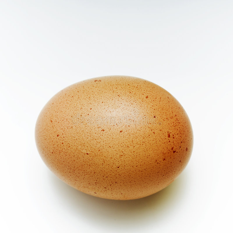 Download Egg stock image. Image of shell, ingredient, food, chicken - 2615061