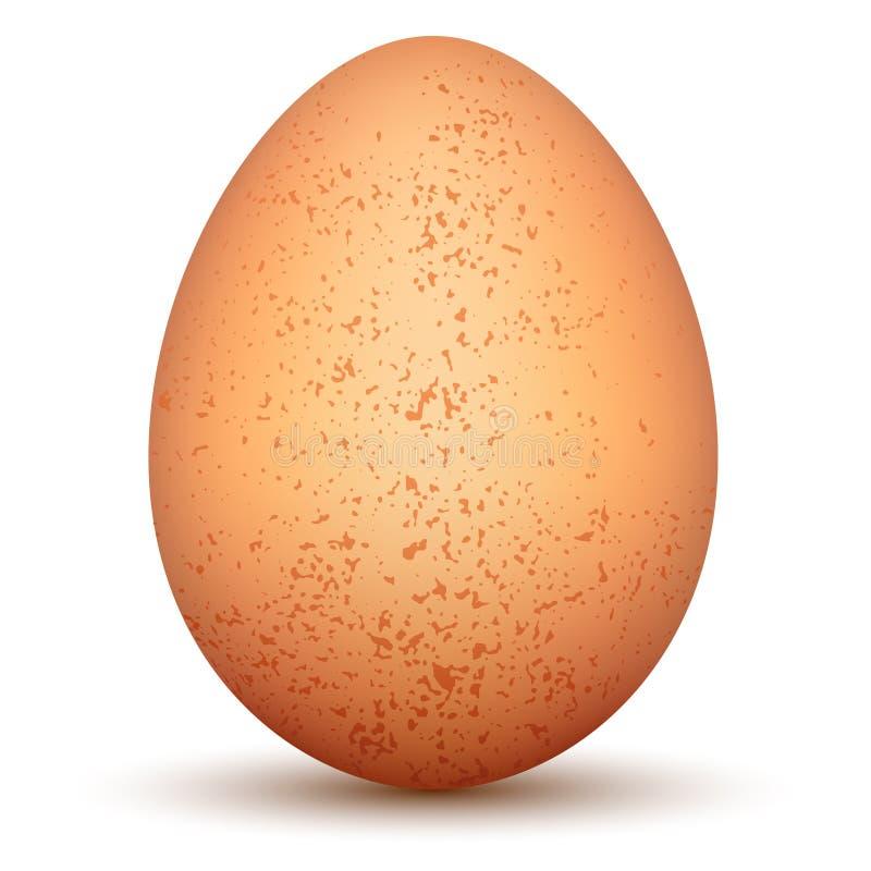 Download Egg. stock vector. Image of groceries, ingredient, illustration - 26673184