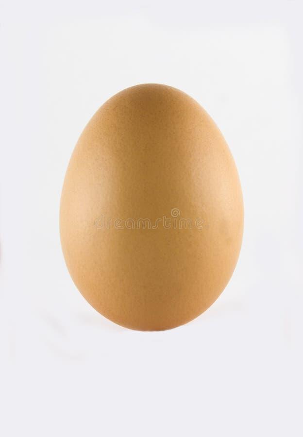 Egg. Standing