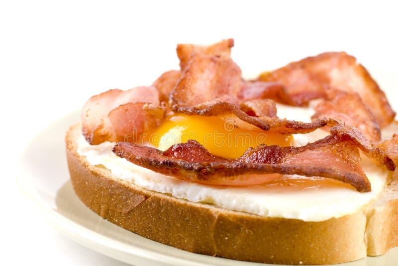 Egg And Bacon Sandwich stock photos