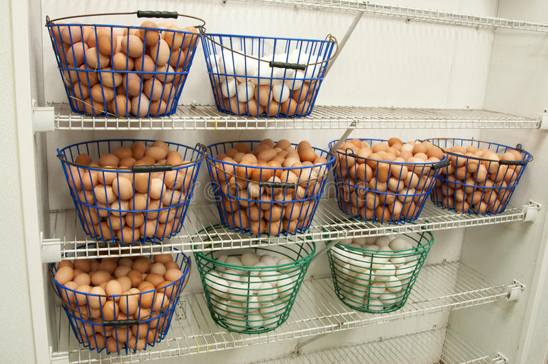 Egg Baskets stock images