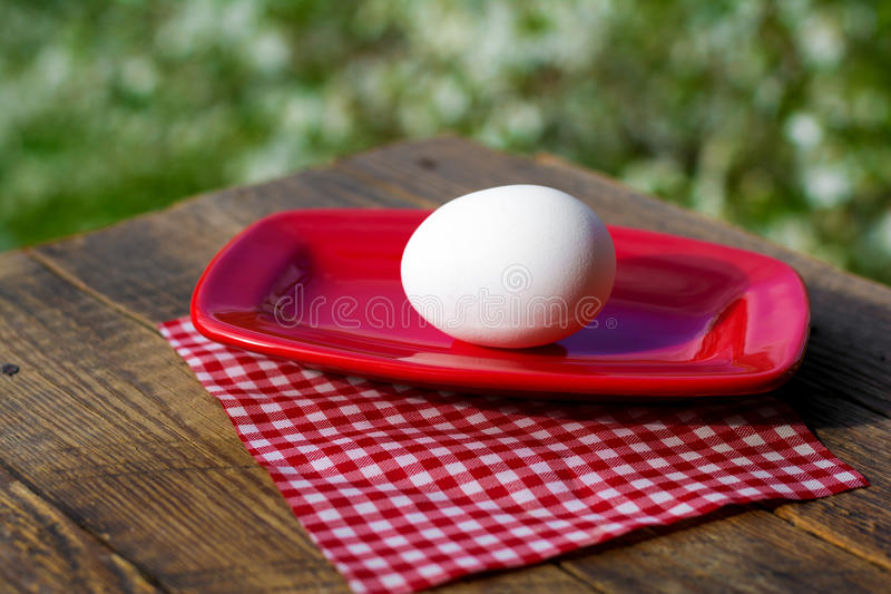 Egg. Breakfast on red plate. One egg stock photography