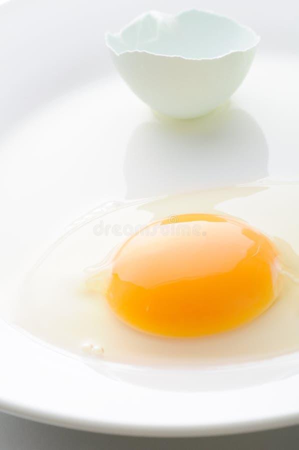 Egg. Broken egg on white plate royalty free stock images