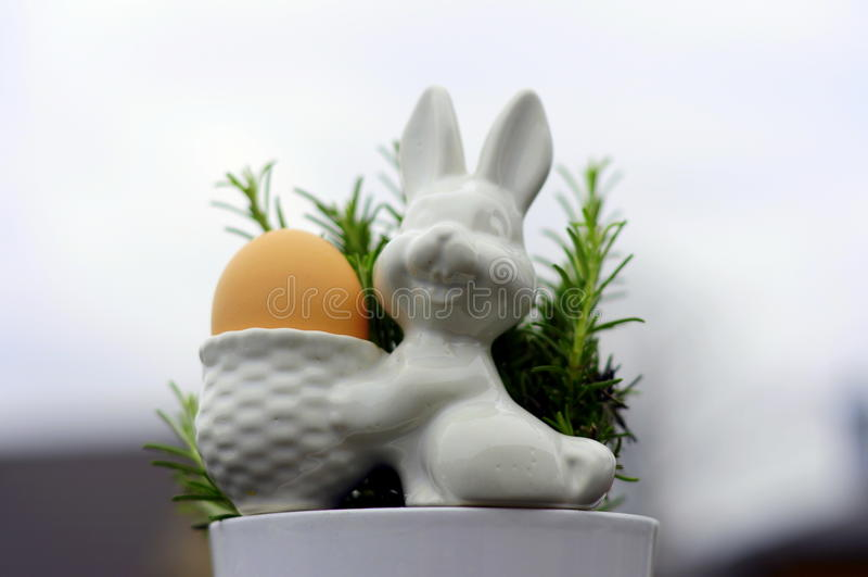 Egg bunny and rosemary 3 royalty free stock image