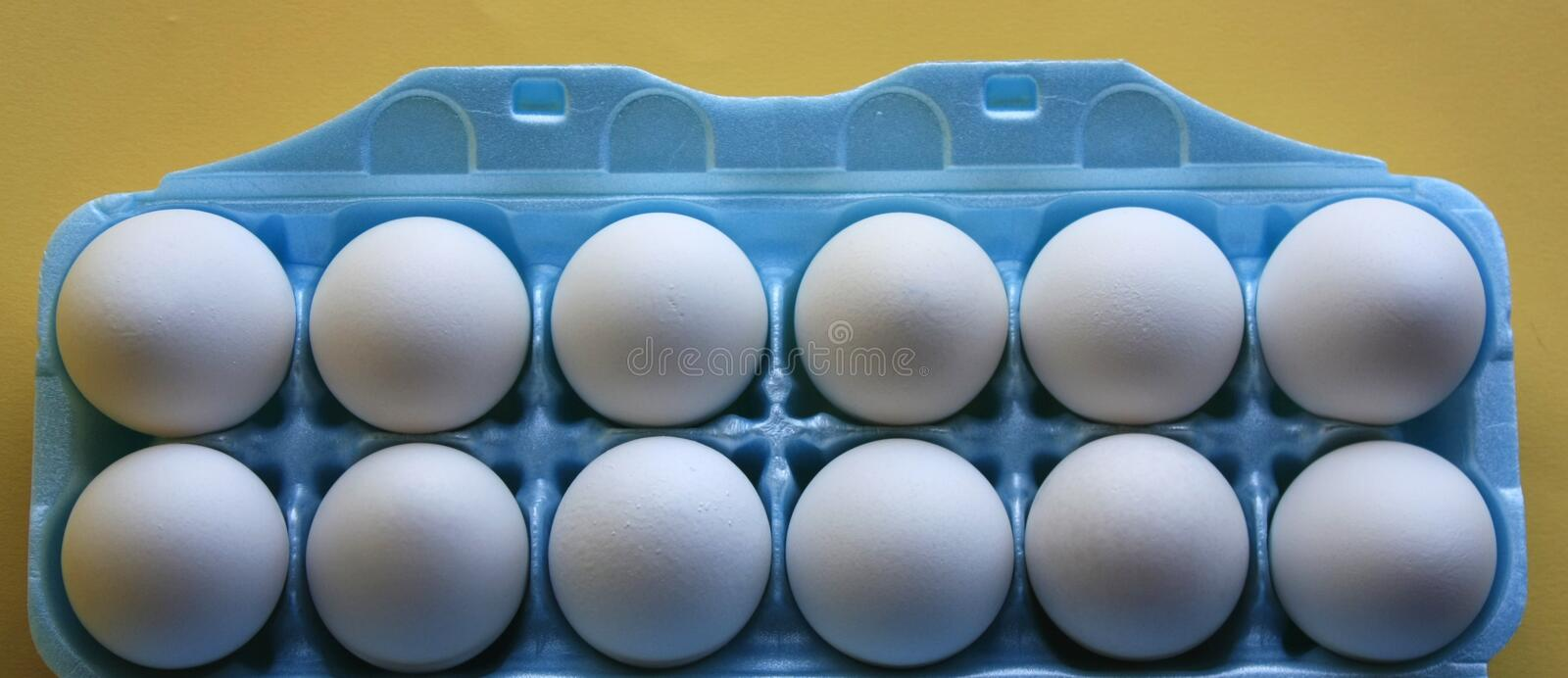 Egg carton and egg holder. Blue egg carton with egg holder stock photo