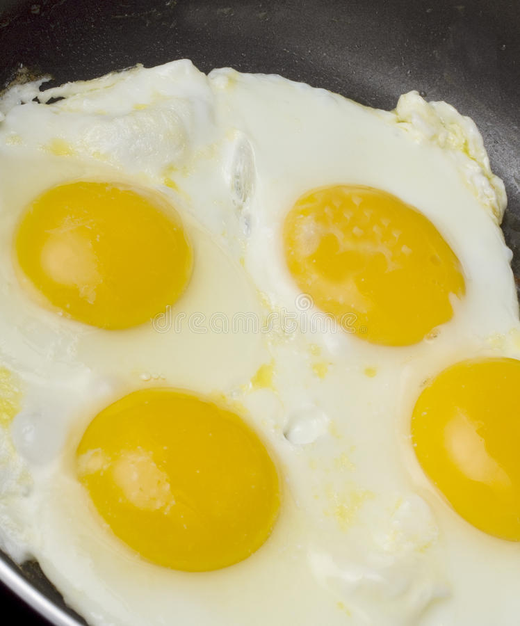 Download Egg Close-Up stock image. Image of eggs, nobody, stove - 25304379