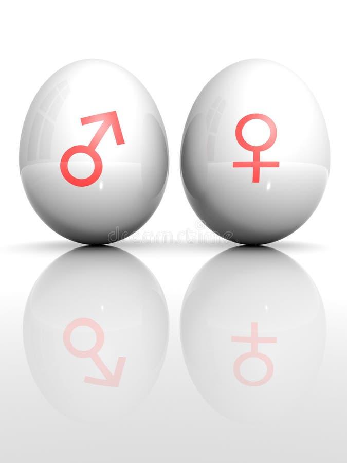 Egg With Drawn Venus And Mars Symbol Royalty Free Stock Photos