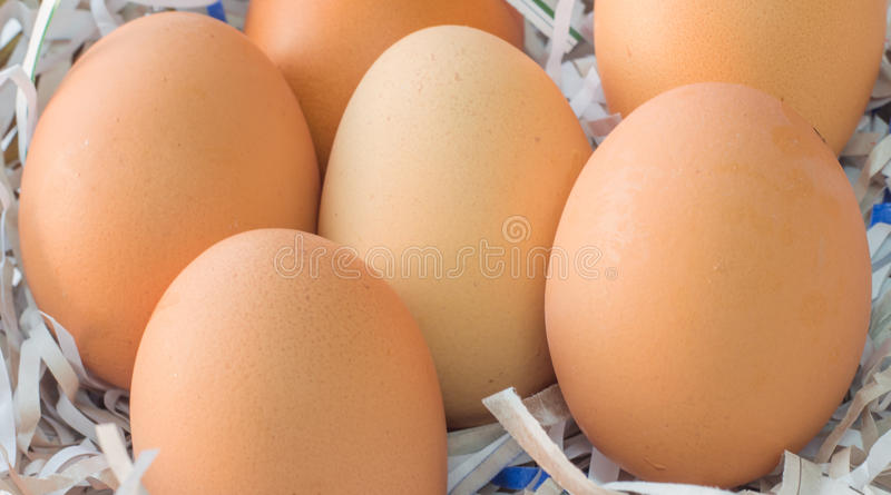 Egg. S are foods that are high in nutritional value stock photos