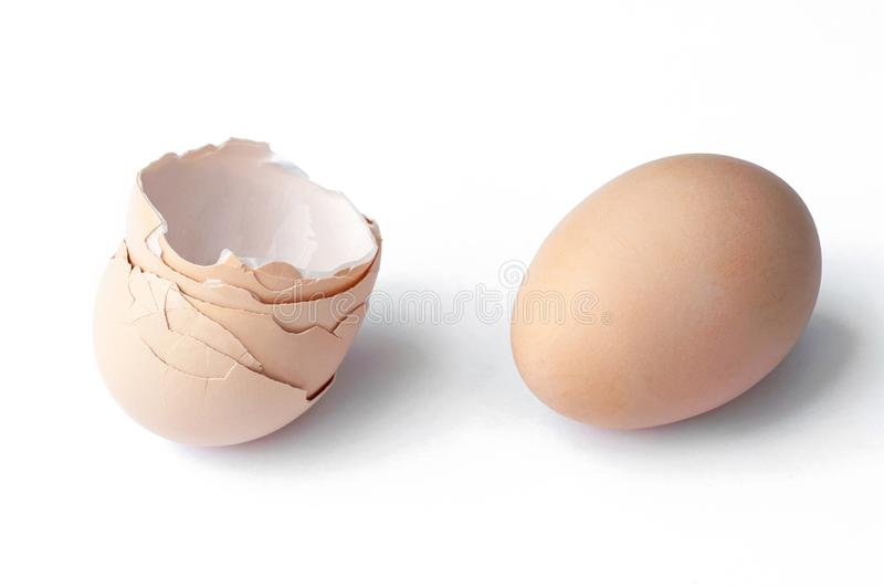 Egg and eggshell isolated on white background royalty free stock images