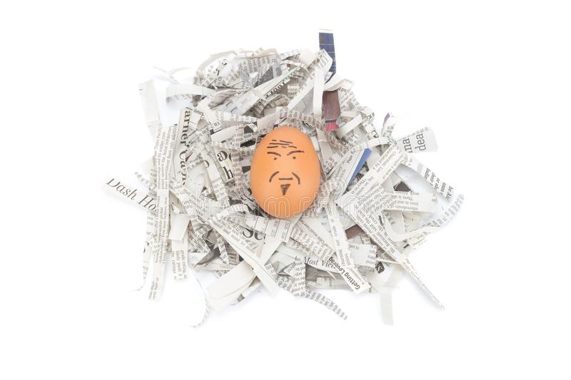 egg face old man on newspapers recycle royalty free stock images