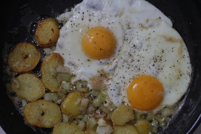 Egg And Fried Potatoes royalty free stock photos