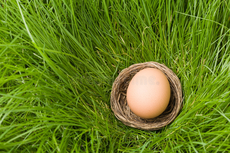 Download Egg & Grass Royalty Free Stock Photos - Image: 8645248