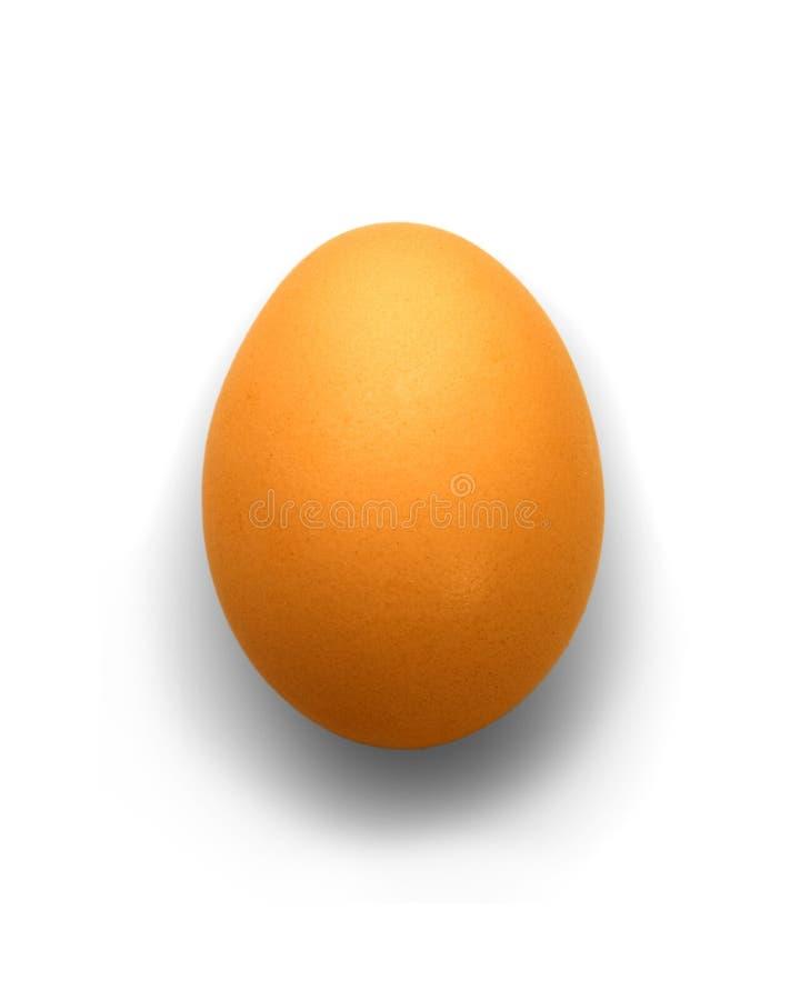 Egg isolato su bianco immagini stock