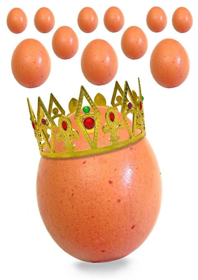 egg królewiątko jego tematy obrazy royalty free