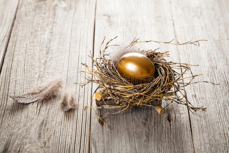 Download Egg in nest stock photo. Image of money, gold, currency - 83721434