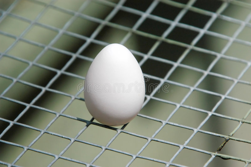 Download Egg No1 stock image. Image of white, background, mesh, backgrounds - 7075