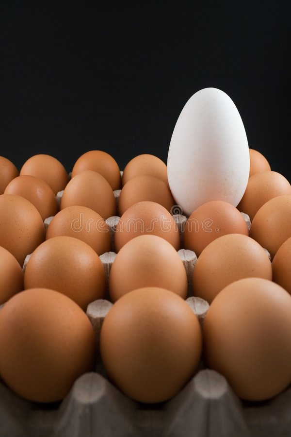 Download Egg(s) stock image. Image of crowd, chicken, white, disproportion - 3231691